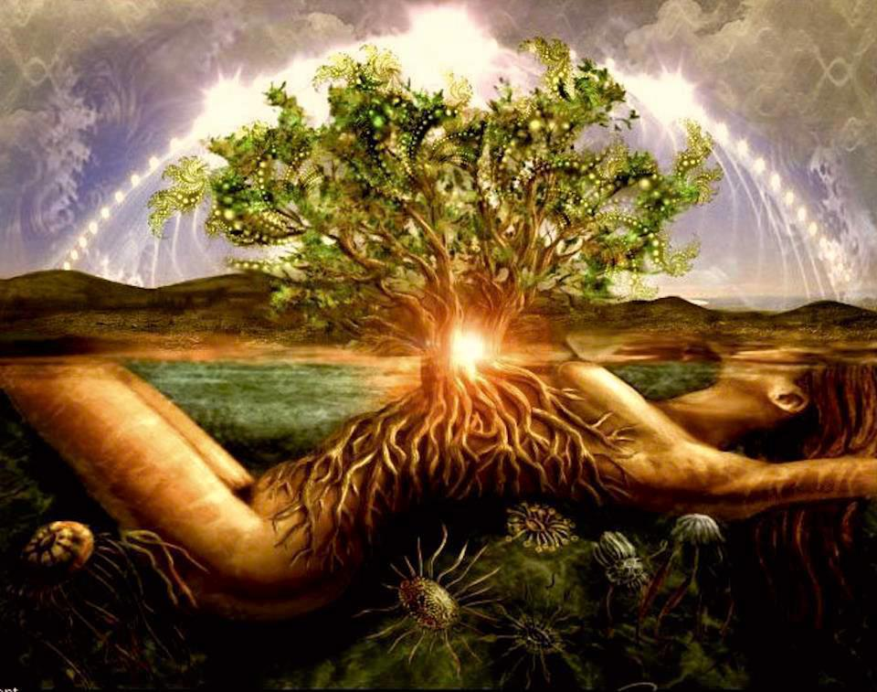 Cosmic Tree Jungian Genealogy By Iona Miller